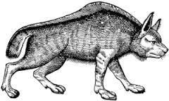 Le loup de Wolfburn
